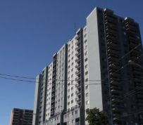 Hamilton: Rental housing committee to find common ground or be shut down