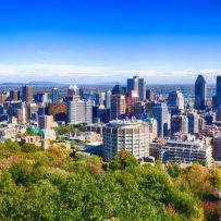 Montreal housing activity impelled by particular demographics – study