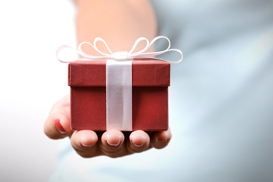 img_gift_holiday_540x360