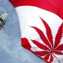 5 things to know about Ottawa's new cannabis legislation