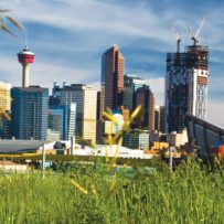 Alberta's metropolitan markets reaping the fruits of economic recovery