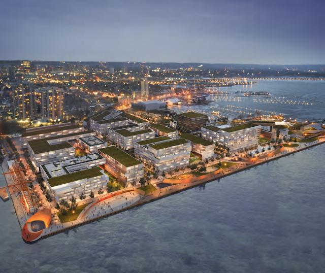 Hamilton: Pier 8 Proposal Draws Inspiration from Nature and Heritage