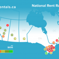 Rental Insights Report