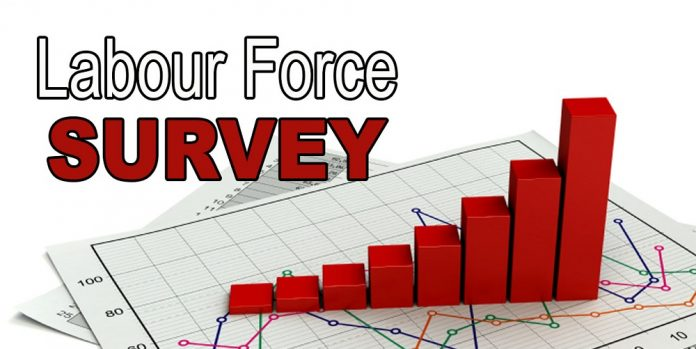 LABOUR FORCE SURVEY, JUNE 2020